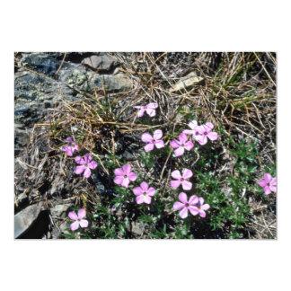 Low Growing Pink Wildflowers flowers 13 Cm X 18 Cm Invitation Card