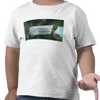 Lower Bridal Veil Falls on Colubia River Shirts