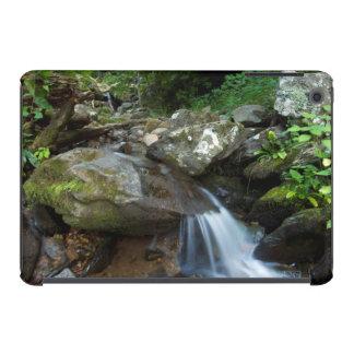 Lower Dark Hollow Falls, Shenandoah iPad Mini Cases