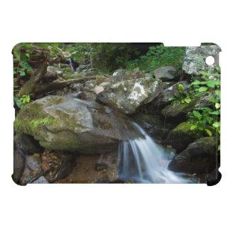 Lower Dark Hollow Falls, Shenandoah iPad Mini Case