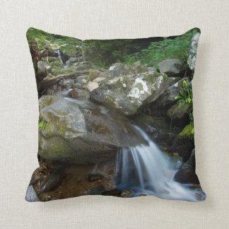 Lower Dark Hollow Falls, Shenandoah Throw Pillow