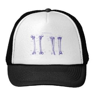 Lower Limb Blue Mesh Hats