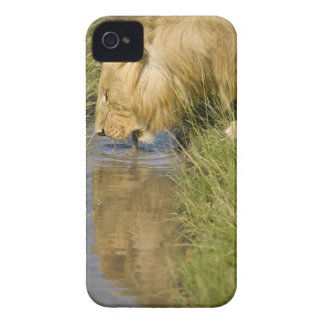 Lower Mara, Masai Mara Game Reserve, Kenya, iPhone 4 Case-Mate Cases