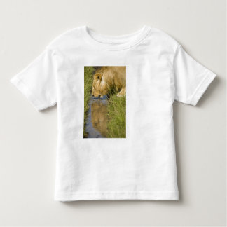 Lower Mara, Masai Mara Game Reserve, Kenya, Toddler T-Shirt