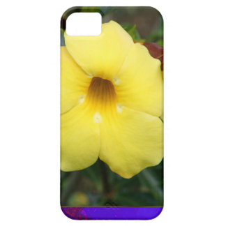 LowPRICE Elegant Gifts ORCHID Flower Yellow Bright iPhone 5 Cover