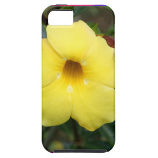 LowPRICE Elegant Gifts ORCHID Flower Yellow Bright iPhone 5 Case
