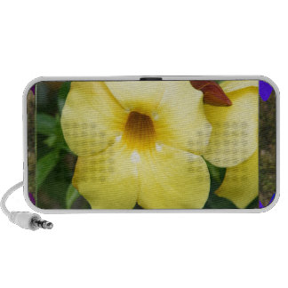 LowPRICE Elegant Gifts ORCHID Flower Yellow Bright Travelling Speakers