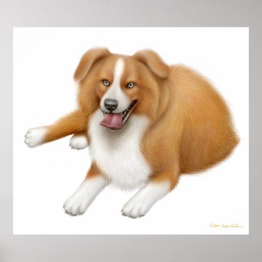 Loyal Border Collie Dog Print