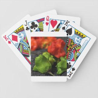 LP Imagekind Zaz jpg Bicycle Playing Cards