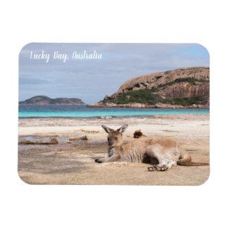 Lucky Bay Beach Kangaroo, Australia Magnet