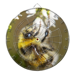 Lucky Bee Dartboard