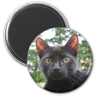 Lucky Black Cat 6 Cm Round Magnet