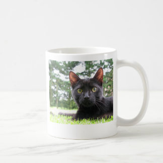 Lucky Black Cat Basic White Mug