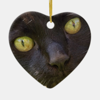 Lucky black cat christmas ornament