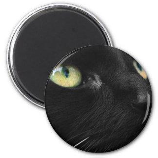 Lucky Black Cat Magnet