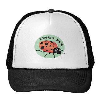 Lucky Bug Cap