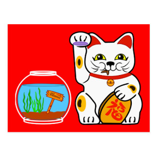 Lucky Cat Unlucky Fish Post Cards