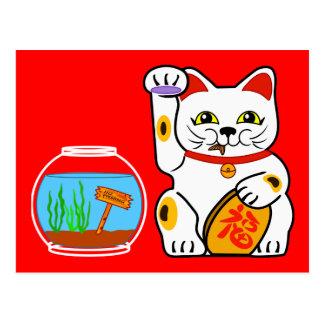 Lucky Cat Unlucky Fish Post Cards