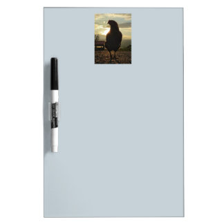 Lucky chicken 01.2 dry erase boards