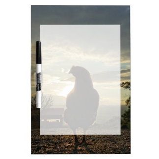 Lucky chicken 01.3 Dry-Erase board