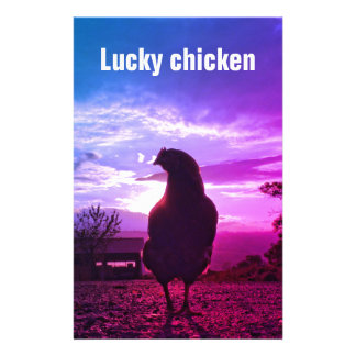 Lucky chicken 01.3TF Stationery Design