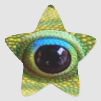 Lucky Chinese Dragon's Eye - WILL KILL EVIL Star Sticker