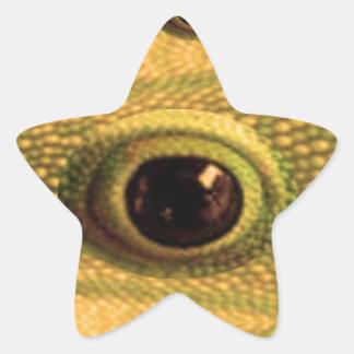 Lucky Chinese Dragon's Eye - WILL KILL EVIL Star Sticker