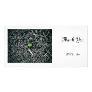 lucky clover card