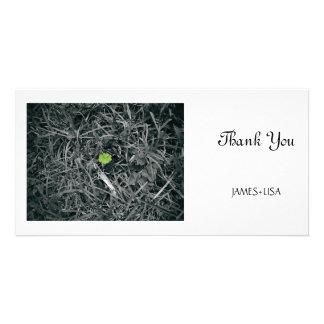 lucky clover custom photo card