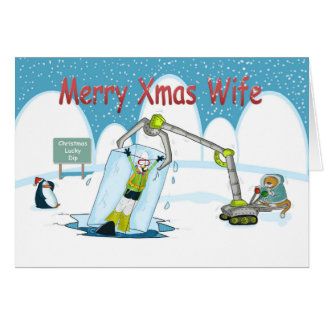 lucky Dip funny diving Merry christmas Wife Cards