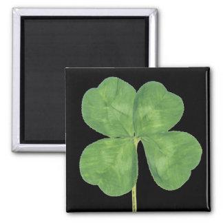 Lucky Four-Leaf Clover Shamrock Magnets