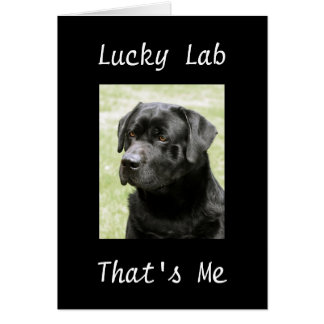 """LUCKY LAB-THAT'S ME"" THANK YOU CARD"
