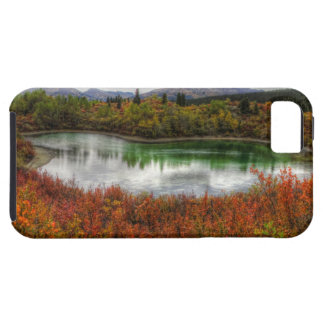 Lucky Lake iPhone 5 Case