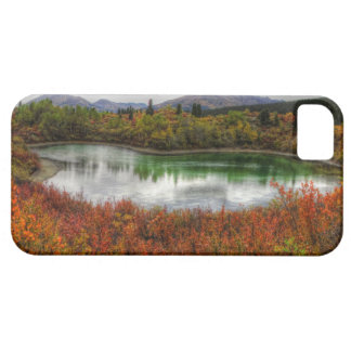 Lucky Lake iPhone 5 Cases