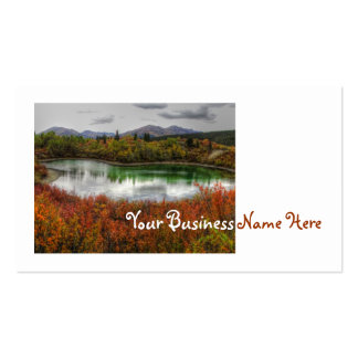Lucky Lake Pack Of Standard Business Cards