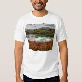 Lucky Lake Shirts