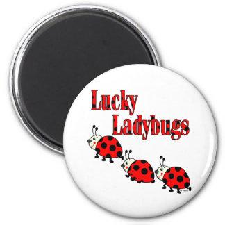 Lucky Little Ladybugs Magnet