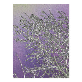Lucky Purple n Silver Streaks V5 Postcards