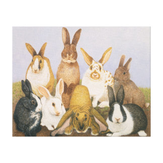 Lucky rabbits canvas print