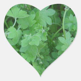 lucky shamrocks heart sticker