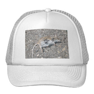 Lucky the Mouse Hat