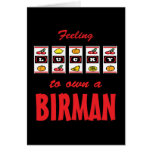 Lucky to Own a Birman Fun Cat Design Card