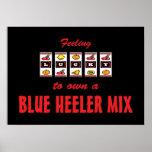 Lucky to Own a Blue Heeler Mix Fun Dog Design Poster
