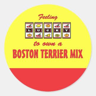 Lucky to Own a Boston Terrier Mix Fun Dog Design Round Sticker