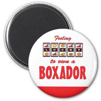 Lucky to Own a Boxador Fun Dog Design 6 Cm Round Magnet