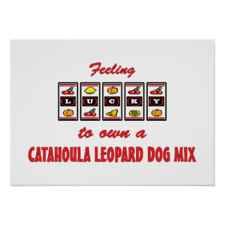 Lucky to Own a Catahoula Leopard Dog Mix Posters