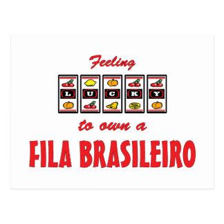 Lucky to Own a Fila Brasileiro Fun Dog Design Post Cards