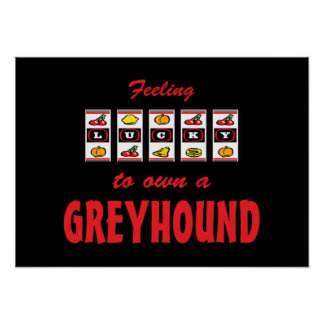 Lucky to Own a Greyhound Fun Dog Design Posters