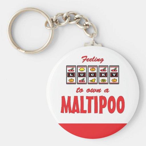 Lucky to Own a Maltipoo Fun Dog Design Key Chain