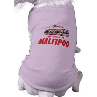 Lucky to Own a Maltipoo Fun Dog Design Sleeveless Dog Shirt